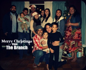 Merry Christmas Branch