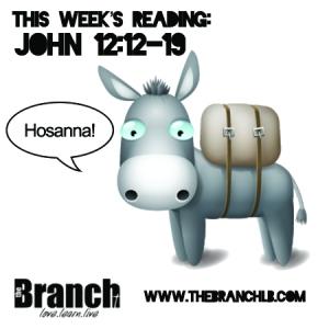 John 12_12-19